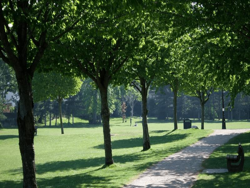 gildredge park walk for carers